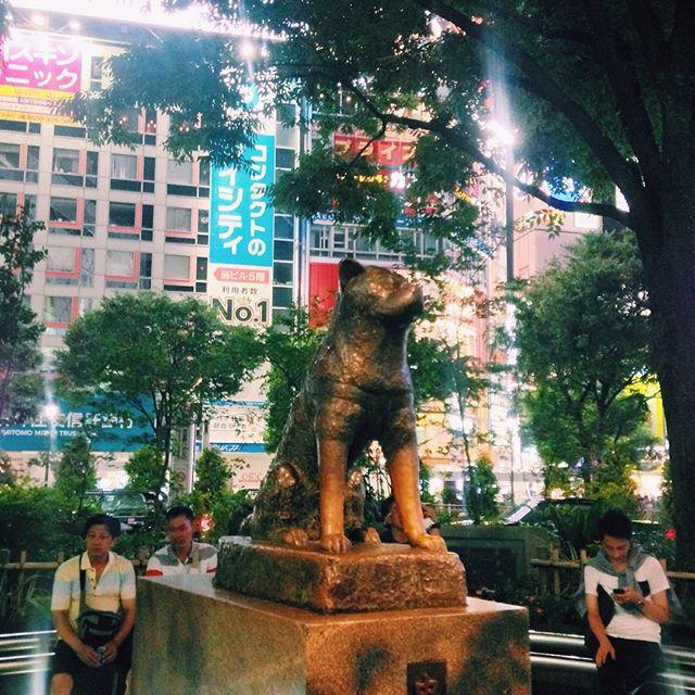 2015-08-14_1439564320.jpg